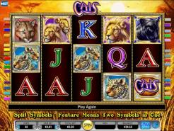Play Cats Slots now!