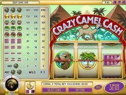 Crazy Camel Cash Slots