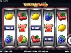 Wild and Fruity Slots